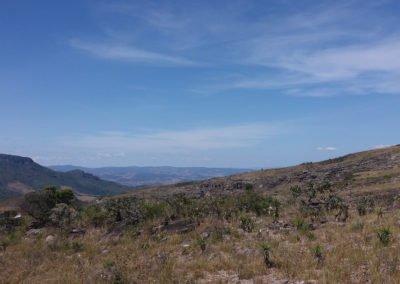 O campo rupestre na Serra das Bandeirinhas